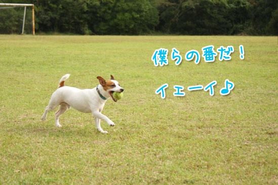 f0132772_19421279.jpg