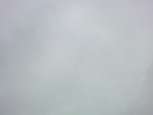 「曇り空…空気もひんやりしています」_e0051174_6331620.jpg