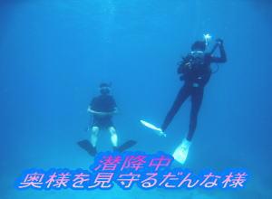 大賑わい!ナイスダイブでダイビング☆_f0144385_2250455.jpg