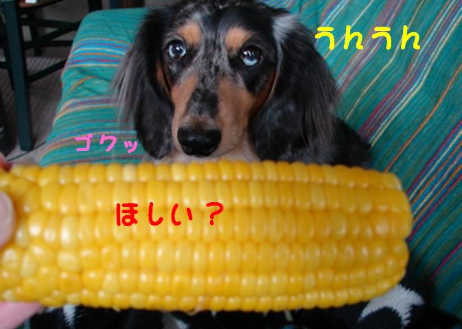 f0195891_15442626.jpg