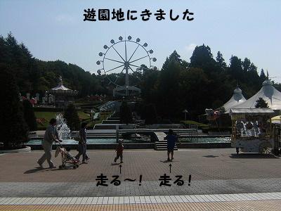 f0085327_16263662.jpg