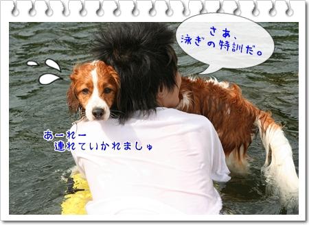 d0013149_1349241.jpg
