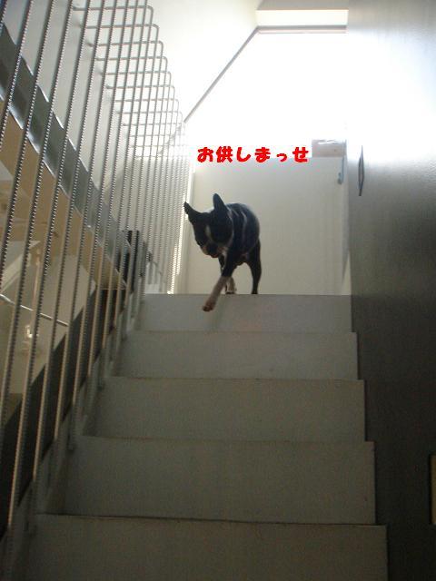 b0027203_012291.jpg