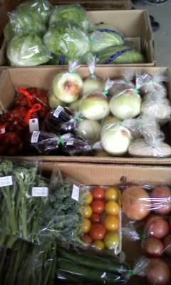 元気いっぱいの野菜さんたち_d0026905_7473498.jpg