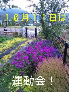 d0148408_163898.jpg