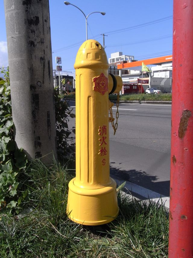 灰色の消火栓の運命_c0025115_17115285.jpg