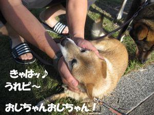 f0143123_2011171.jpg