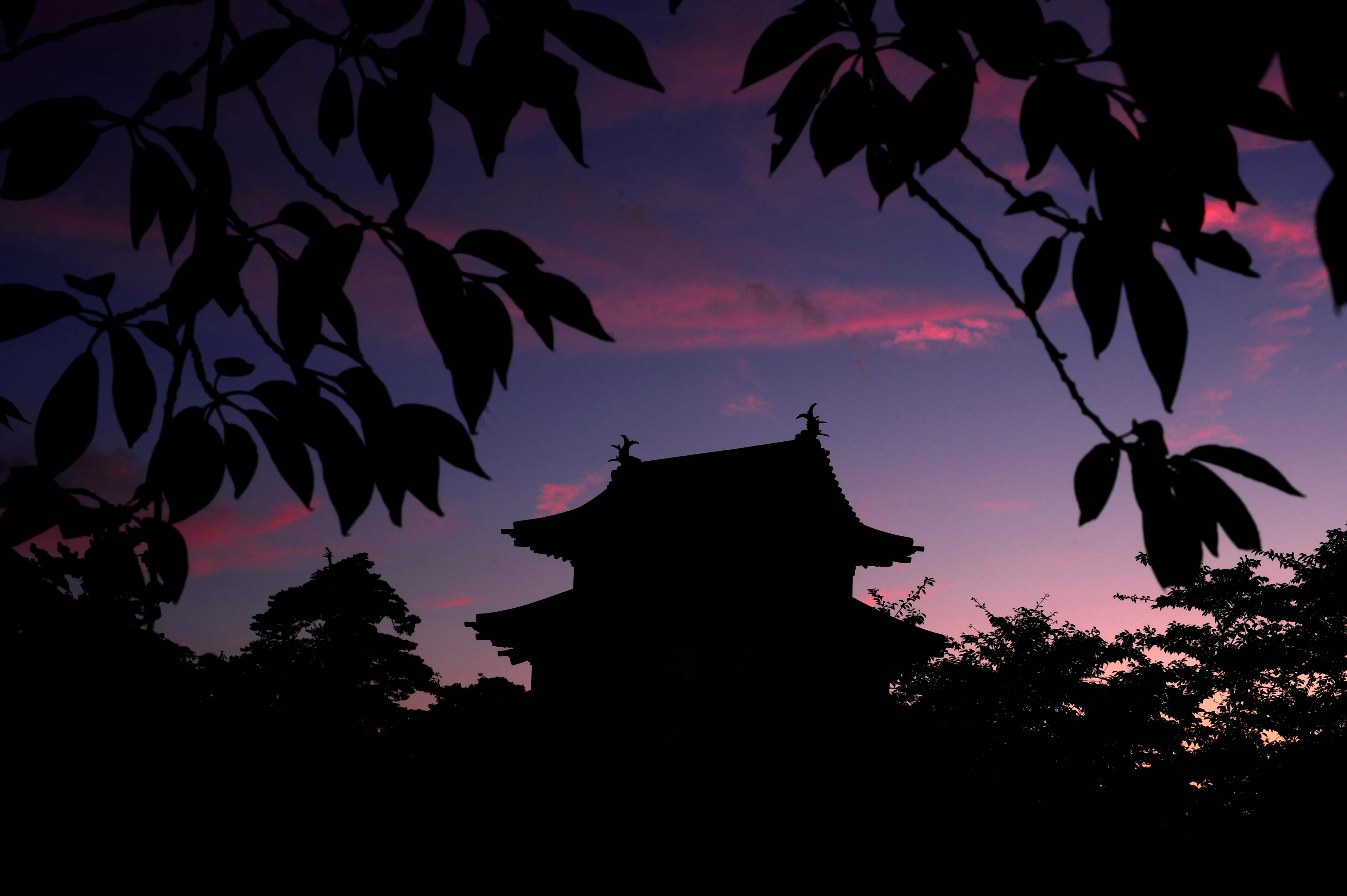 お城と夕焼け_e0157647_6283913.jpg
