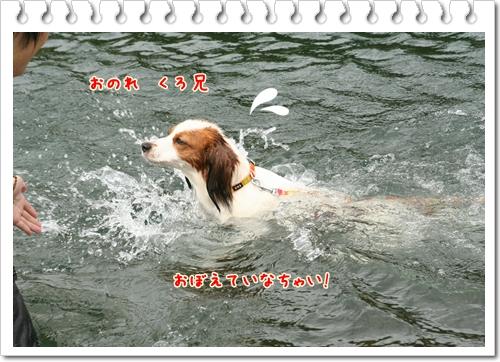 d0013149_8173280.jpg