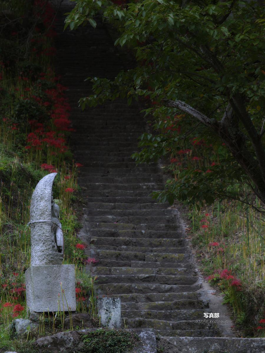 奈良 オフ会 仏隆寺  1_f0021869_17282099.jpg