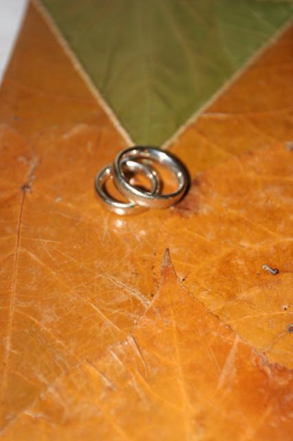 木婚式----5回目の結婚記念日_c0179785_16254521.jpg