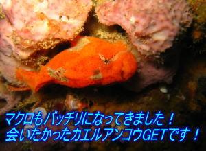 f0144385_0414691.jpg