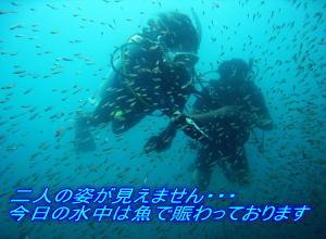 f0144385_0424578.jpg