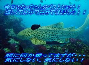 f0144385_042647.jpg