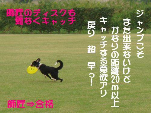 b0101991_2037264.jpg