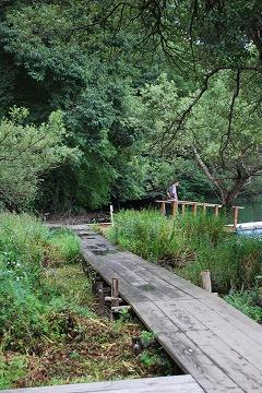 湖畔の森に囲まれた外観_c0124100_15103811.jpg