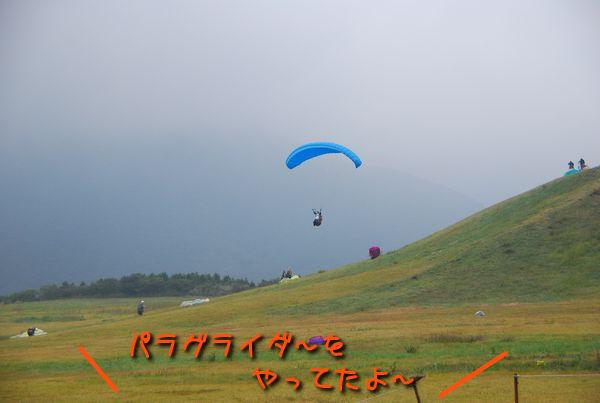 f0203612_16444030.jpg