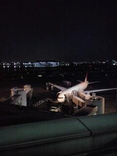夜間飛行_d0141735_1985276.jpg