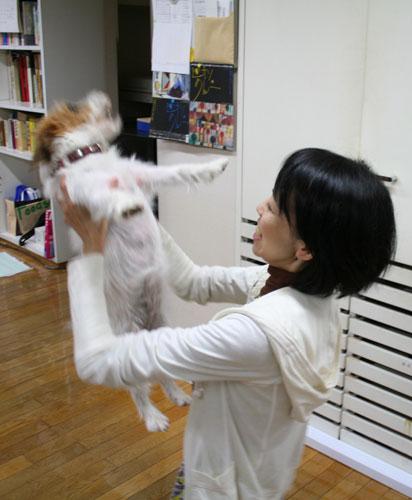 町田さん、ベルとの再会。_f0171840_16563080.jpg