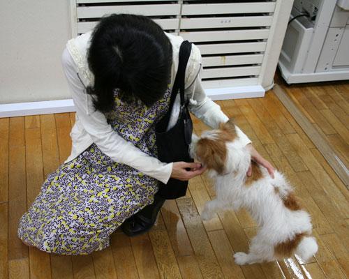 町田さん、ベルとの再会。_f0171840_17191848.jpg