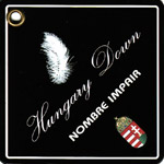 NOMBRE IMPAIR ハンガリーダウンショートブルゾン_a0130646_1622831.jpg