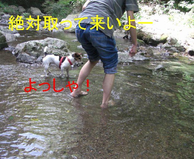 f0053952_1711577.jpg