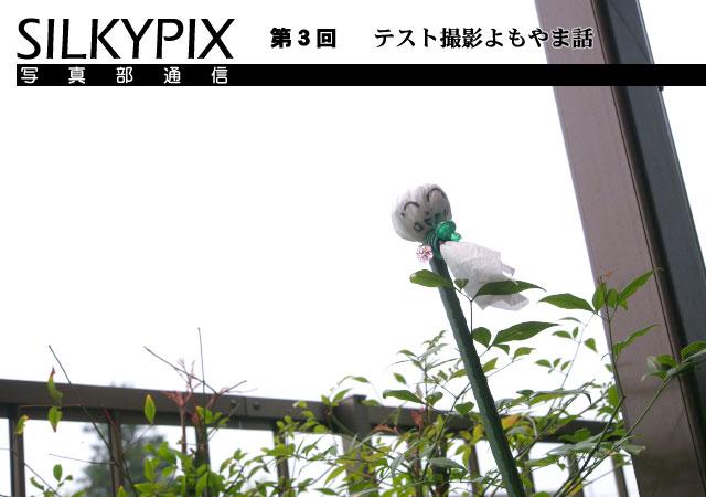 SILKYPIX写真部通信 第3回 テスト撮影よもやま話_c0168669_19334963.jpg