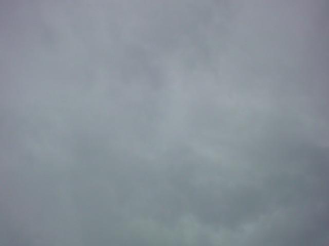 「雨ですかぁ…。」_e0051174_6463923.jpg