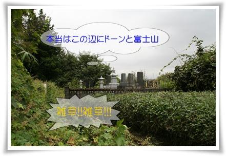 c0124577_18483827.jpg