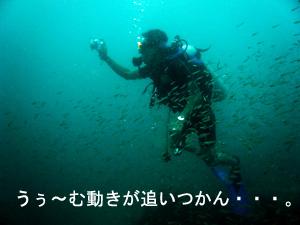 f0144385_21574338.jpg