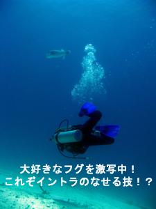 f0144385_654962.jpg
