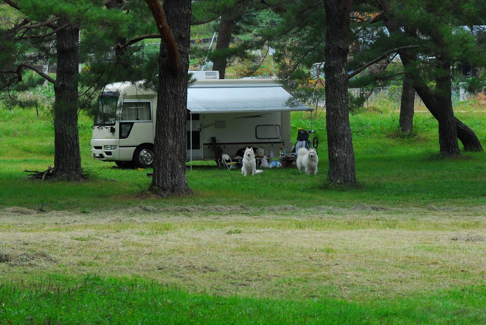 行ってきました!美女高原キャンプ場 part3_a0049296_6265223.jpg