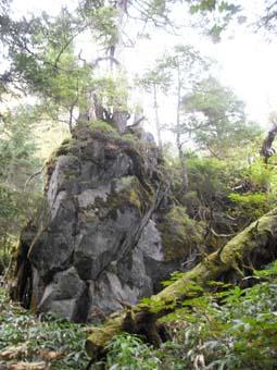 焼岳へ登頂(前編)_e0008704_2156147.jpg