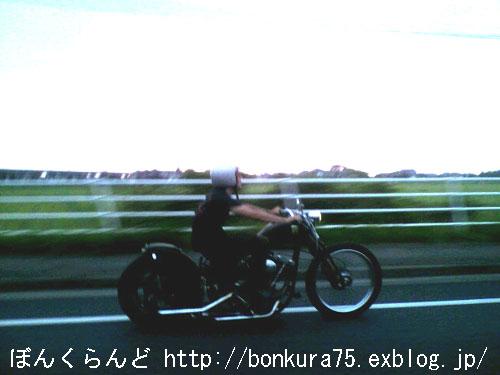 b0080809_20444464.jpg