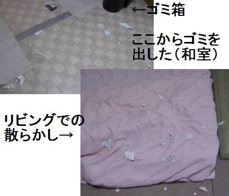 e0059512_926773.jpg