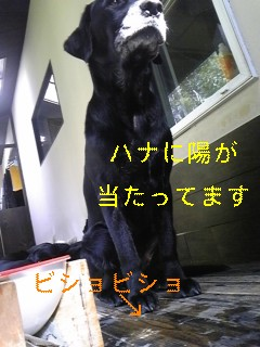 お水_f0148927_19103581.jpg