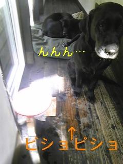 お水_f0148927_1913369.jpg