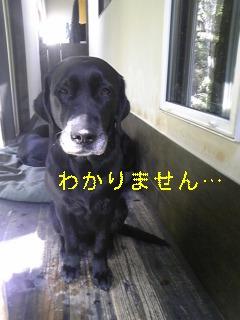 お水_f0148927_1933167.jpg