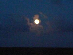 2009年の夏のはじまり 〜七夕∞満月〜_c0069848_23382373.jpg