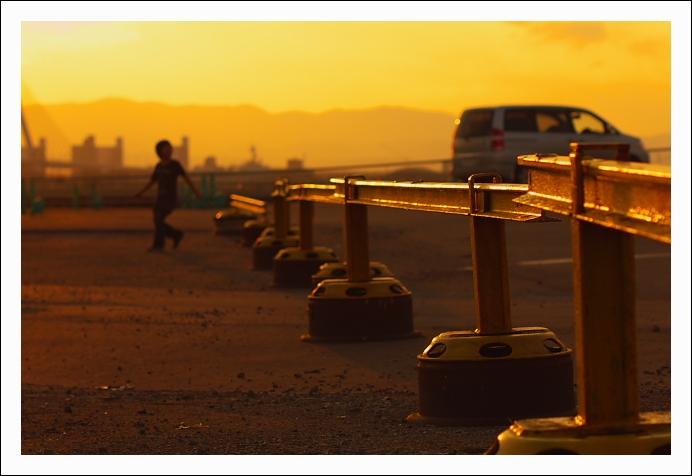 陽が暮れてツキヨタケは蒼く光る_c0170584_20315864.jpg