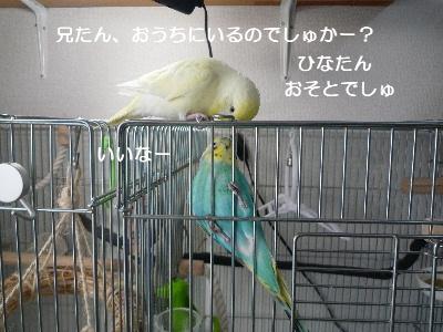 b0062090_132038.jpg