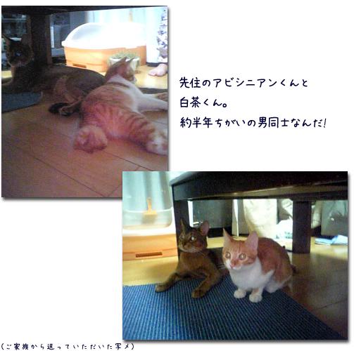 f0002218_112791.jpg
