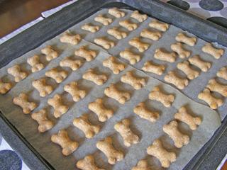 *犬用クッキー*_d0094131_018668.jpg