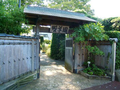 鎌倉公園の野草園(写真12枚)_e0089232_18515345.jpg