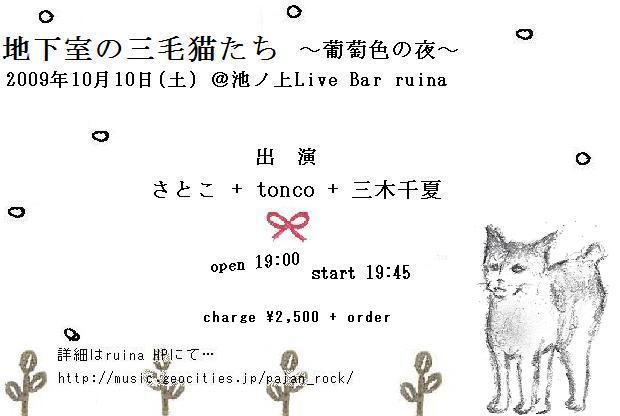 地下室の三毛猫たち 第二夜_b0185236_13283946.jpg