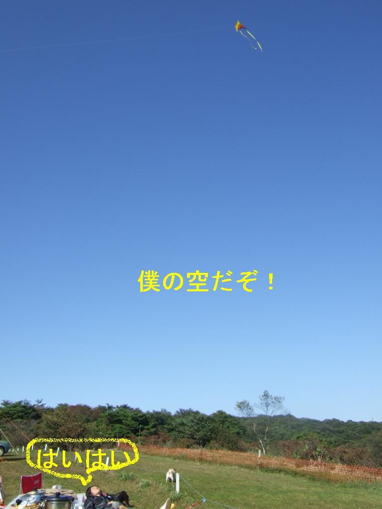f0063791_1340127.jpg