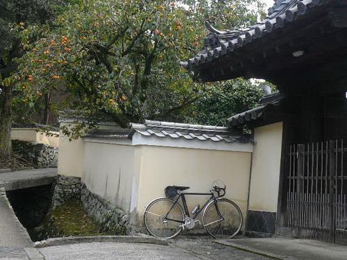 今日のお散歩_b0174217_21435937.jpg