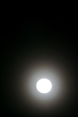 f0039219_201145.jpg