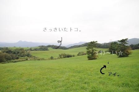 b0119620_11355612.jpg