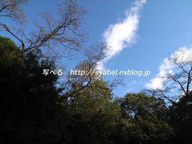 c0153764_17543385.jpg
